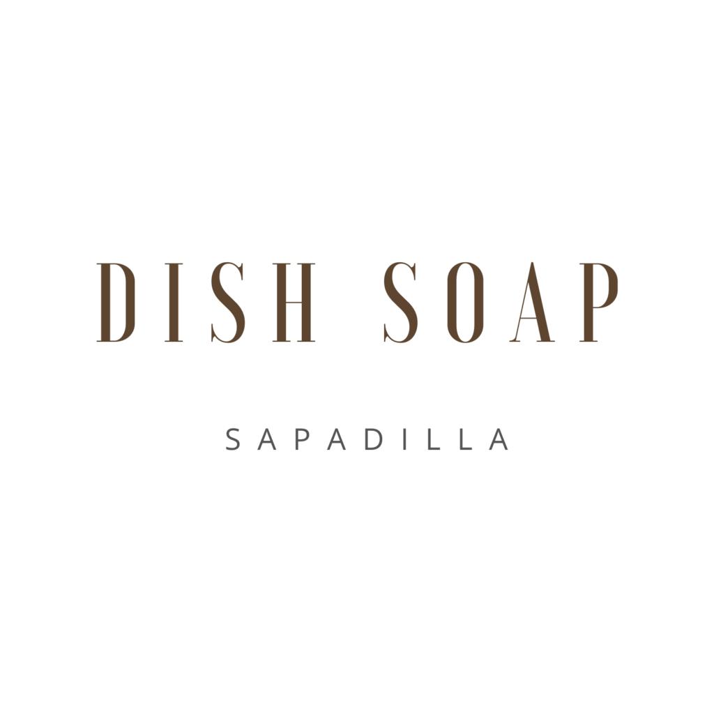 Dish Soap Sapadilla